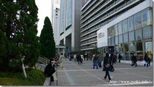 http://www.ryoko.info/tokyo/jpg/096tokyo.jpg